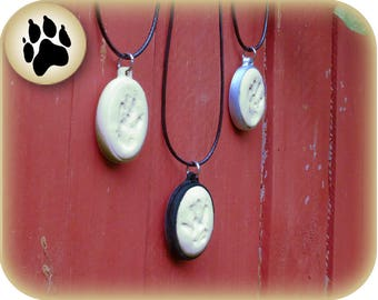Small Animal Paw Print Kit | 3D Printed | Memorial Necklace for Small Pets