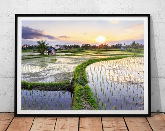 Bali Sunset Photography Print // Ubud Rice Fields Wall Art, Indonesia Landscape Photo, Colorful Asia Home Decor, Green Nature Office Decor