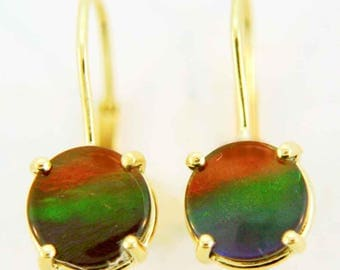 Three Color Round Shaped Canadian Ammolite Lever Back Earrings set in 14k Yellow Gold.