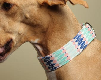 Martingale, Buckle, Limited Slip, Dog Collar / Pastels/ Sighthound Collar / Training Collar