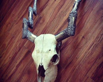 Animal skull with metal Antlers