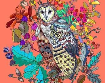 Owl Print (Cushion, Apron, Tea Towel)