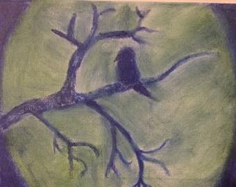 Patient Bird