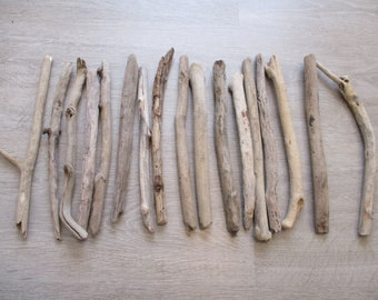 Lot of driftwood (17 pieces)