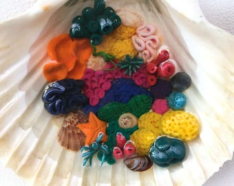 Colorful coral reef handmade in real shell made of polymer clay and sealed with resin resin