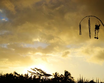 Bali Photography, Rice Field At Sunset, Travel Photography, Wall Art, Ubud, Indonesia
