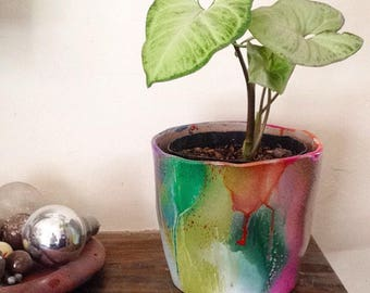 Colourfucked plant pot