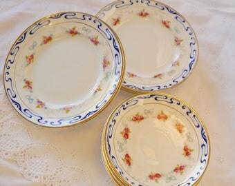6 bone china Tea Plates and 6 saucers, rosebud design , Royal Vale