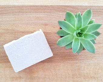 Geranium and Brazil nut Soap