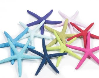 10 assorted coloured Starfish or pick your own custom made colour