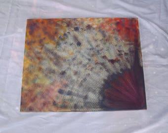 Seashell 16x20