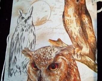 OWL and OWL
