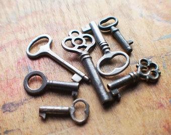 Tiny Antique Skeleton Key Set - Instant Collection
