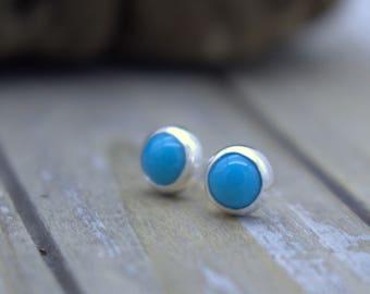 Sleeping Beauty Turquoise  Stud Post Earrings