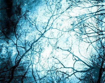 50% OFF SALE Surreal Night Sky Photo, Celestial Photograph, Blue, Nature, Trees, 5x5 inch Fine Art Print, And I Heard the Sound of Nothing