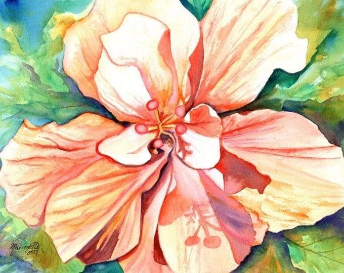 Double Peach Tropical Hibiscus Original Watercolor Painting watercolour art tropical flower Hawaii Hawaiian Kauai Maui Oahu kauaiartist