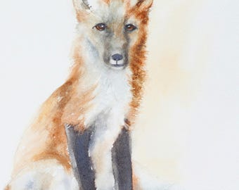 for him painting of baby fox print of fox painting of Fox art PRINT  baby fox wall hanging kit woodland nursery print watercolour painting