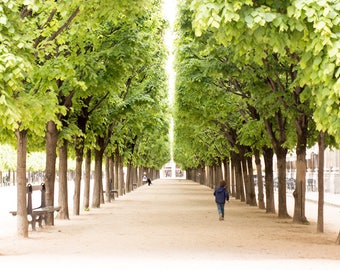 Paris Photography, Morning walk through Palais Royal, Paris France, Paris Gardens, Paris decor, Nature, Spring in Paris, Green