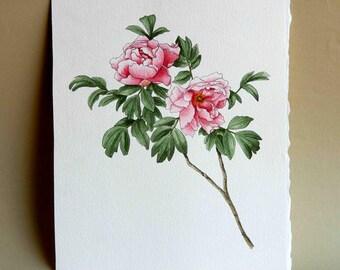 Tree Dahlia watercolor painting