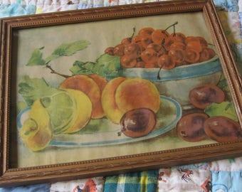 Vintage Framed Fruit Print