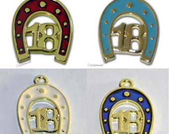 2018 Metal Favors with Horseshoe Gold Tone Luck Charm With Enamel Color Blue, Red, Ecru or Light Blue, 2018 Charms