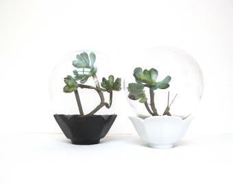 Vintage Water Globe, Crystal Boutique for Floral Arrangement