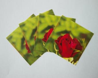Red Rosebud Sticker