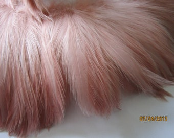 "Three inch strip of LIGHT PINK Strung Rooster HACKLE feathers - individual feather about 5"" long"