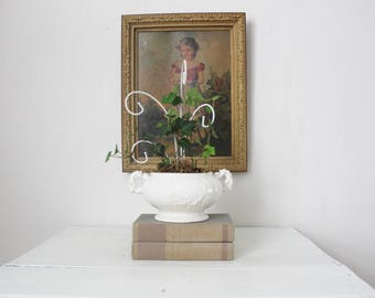 Live Ivy Topiary in Vintage White Pot