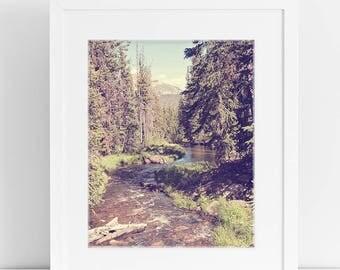 Vintage Style River Photograph, Forest Photography, Vintage Landscape, Physical Print