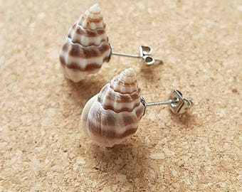 sea Shell stud earrings unique one of a kind mermaid gift - free shipping