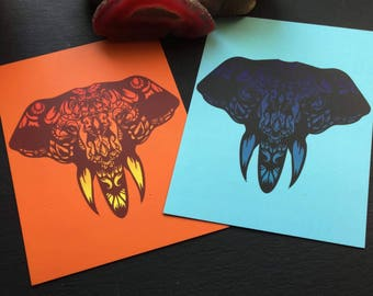 Indian elephants postcards