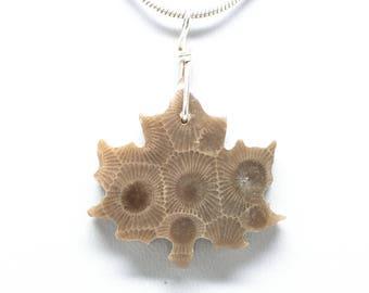 Petoskey Stone Maple Leaf Pendant