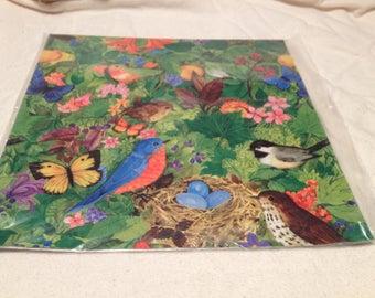 Bird Gift Wrap Sealed