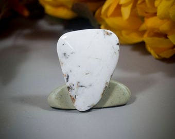 White BuffaloTurquoise Cabochon cab4548