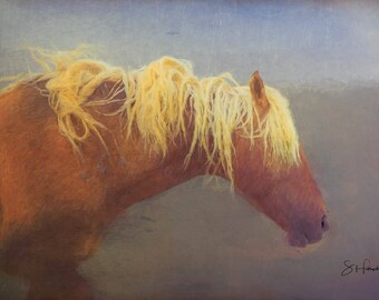 Corona - Painting - Wild Mustang of Sand Wash Basin, Wild Horse Painting, sand wash basin wild horses, Colorado stallion