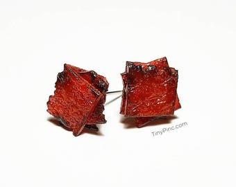 Bak Kwa (肉干 / Meat Jerky) Earrings