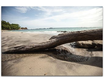 Coastal Wall Art 'Driftwood Destination' by Meirav Levy - Beach Decor Tropical Driftwood Decor on Metal or Plexiglass