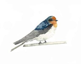 Swallow Print, Welcome Swallow, Australian Bird, Perching Bird Art, Tiny Bird Wall Art, Watercolour Bird