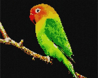 Needlepoint Kit or Canvas: Parakeet