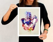 "Fine Art Print, ""Watercolor Pelvis"", 11"" x 14"", Osteopathic Nurse Practitioner gift, Chiropractor art, Orthopedic Surgeon, Pelvis print"