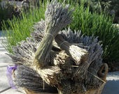 10 Dried Lavender Bundle Bunches  wholesale  (Each Bundle is 5.80 per 4 Oz for a total of 40 OZ)