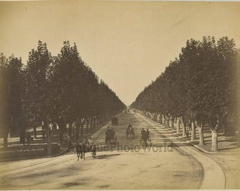 Tuileries gardens horse carriages France antique albumen photo
