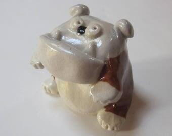 English Bulldog Sitting Up For A Treat