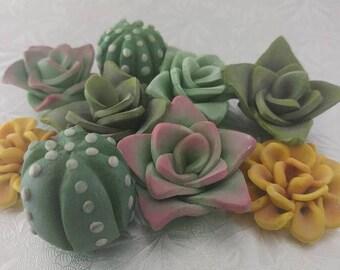 Mini Succulent Cactus Edible Fondant Cupcake Toppers