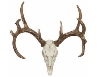 Faux Whitetail Deer European mount, Antler Mount, Deer Antlers