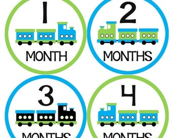 Baby Month Stickers, Baby Boy Gift, Milestone Stickers, Monthly Sticker, Monthly Baby Boy Stickers, Baby Bodysuit, Baby Shower Gift 043