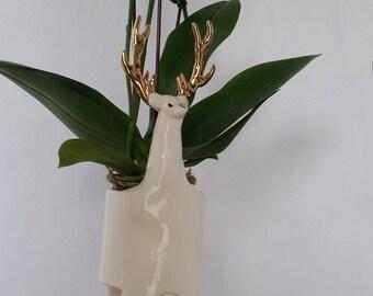 Ceramic Stag Planter with golden antlers / indoor planter / succulent planter