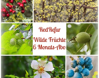 """Needle subscription """"Wild fruits"""" 6 months"""