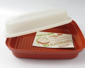 Vintage Tupperware Season and Serve, Marinate Meat and Veggies , Paprika and Sheer Color, Tips and Recipes
